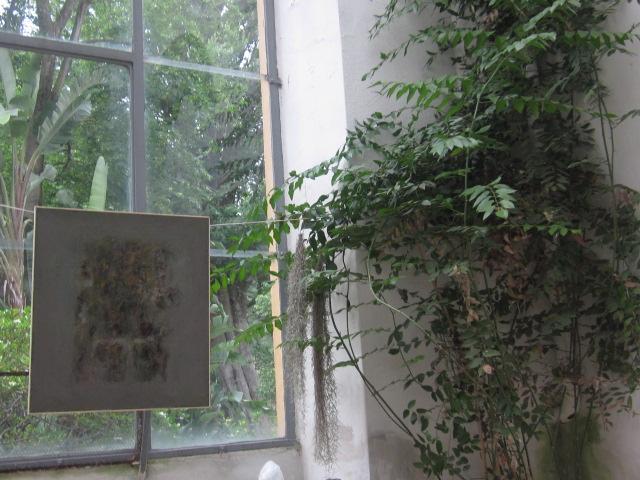 Sergio gagliolo larte nellorto botanico di firenze